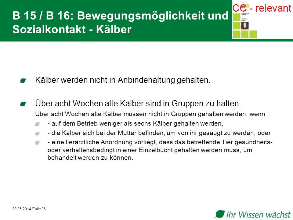 B 15 / B 16: Bewegungsmöglichkeit und Sozialkontakt - Kälber Kälber werden nicht in Anbindehaltung gehalten. Über acht Wochen alte Kälber sind in Grup