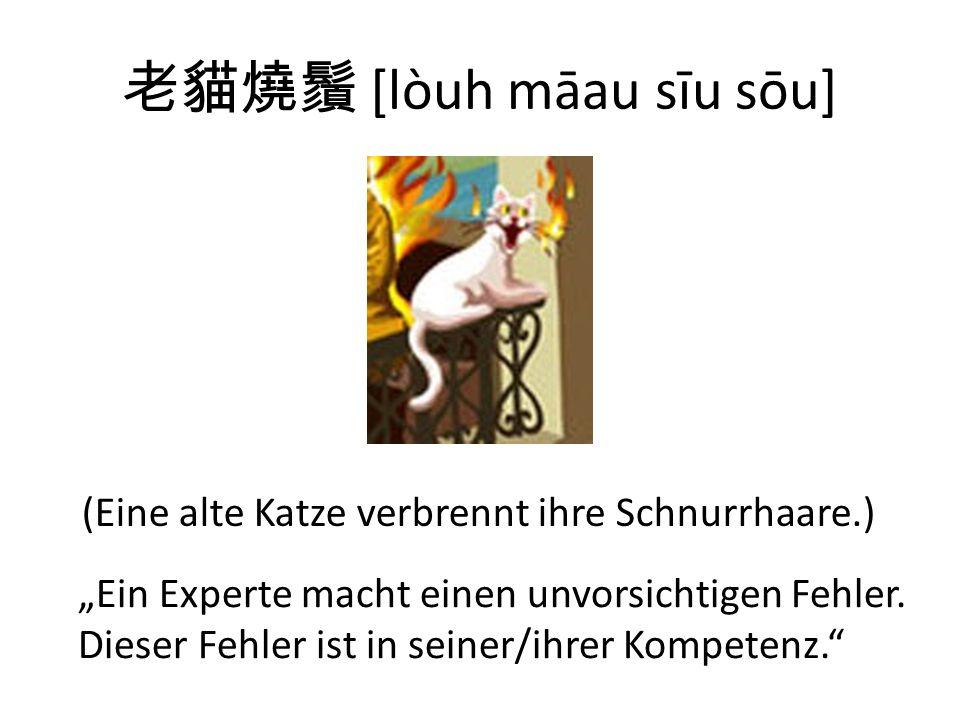 [lòuh māau sīu sōu] (Eine alte Katze verbrennt ihre Schnurrhaare.) Ein Experte macht einen unvorsichtigen Fehler.