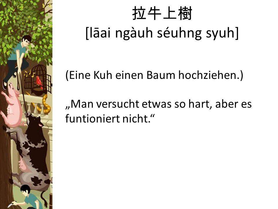 [lāai ngàuh séuhng syuh] (Eine Kuh einen Baum hochziehen.) Man versucht etwas so hart, aber es funtioniert nicht.