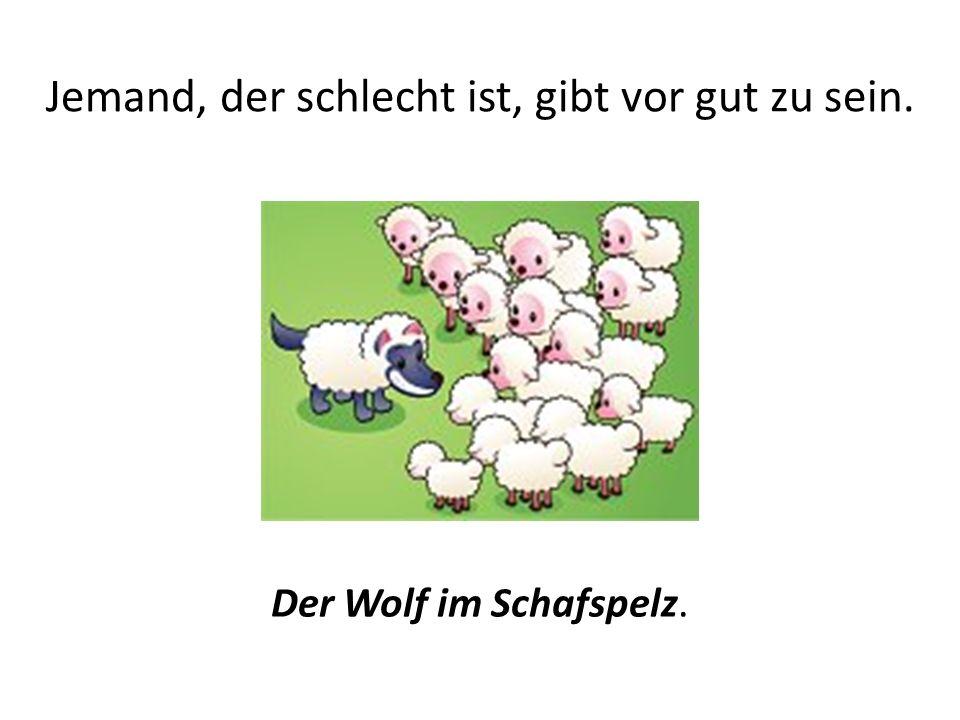 Jemand, der schlecht ist, gibt vor gut zu sein. Der Wolf im Schafspelz.