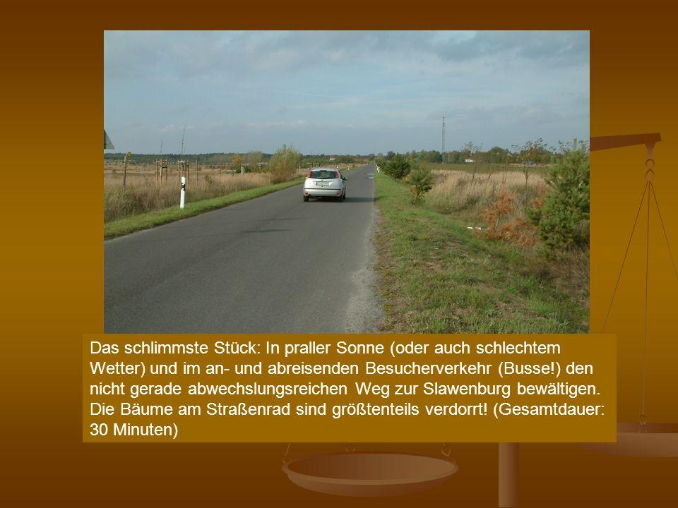 Das schlimmste Stück: In praller Sonne (oder auch schlechtem Wetter) und im an- und abreisenden Besucherverkehr (Busse!) den nicht gerade abwechslungsreichen Weg zur Slawenburg bewältigen.