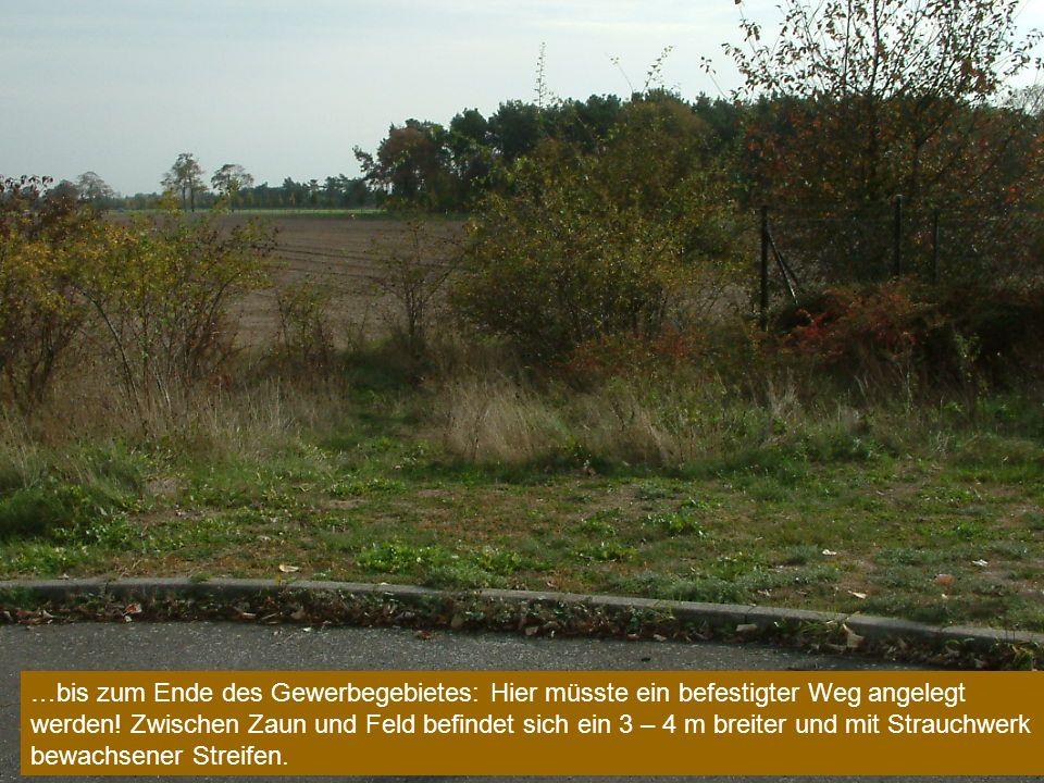 …bis zum Ende des Gewerbegebietes: Hier müsste ein befestigter Weg angelegt werden.