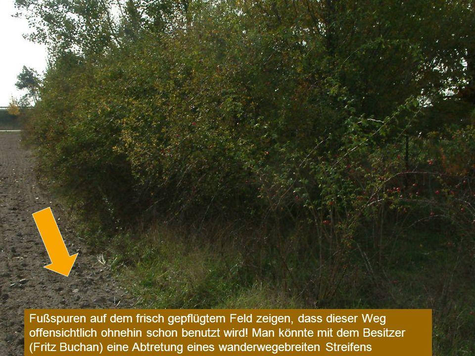 Fußspuren auf dem frisch gepflügtem Feld zeigen, dass dieser Weg offensichtlich ohnehin schon benutzt wird.