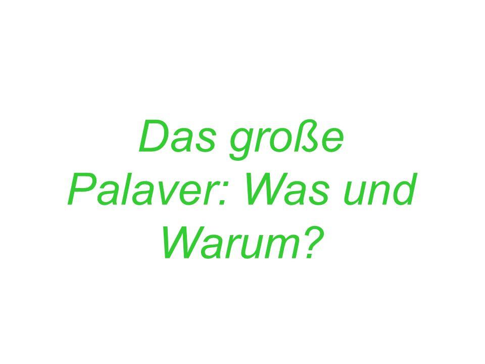 Das große Palaver: Was und Warum?