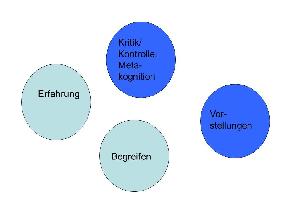 Begreifen Erfahrung Vor- stellungen Kritik/ Kontrolle: Meta- kognition