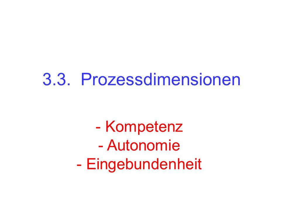 3.3. Prozessdimensionen - Kompetenz - Autonomie - Eingebundenheit