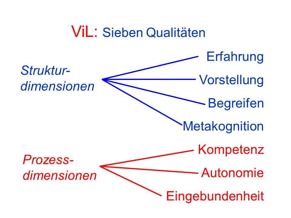 ViL: Sieben Qualitäten Erfahrung Vorstellung Begreifen Metakognition Kompetenz Autonomie Eingebundenheit Struktur- dimensionen Prozess- dimensionen