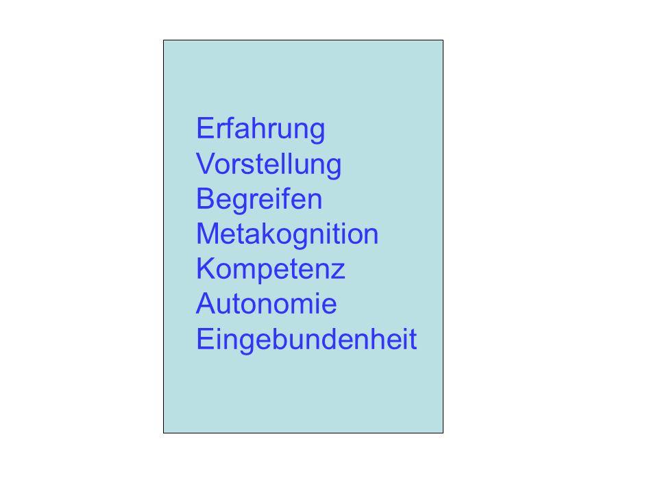 Erfahrung Vorstellung Begreifen Metakognition Kompetenz Autonomie Eingebundenheit