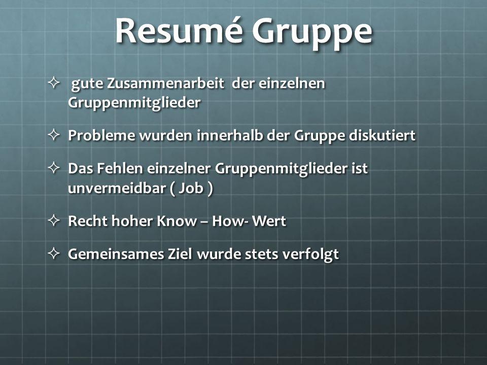 Resumé Gruppe gute Zusammenarbeit der einzelnen Gruppenmitglieder gute Zusammenarbeit der einzelnen Gruppenmitglieder Probleme wurden innerhalb der Gr
