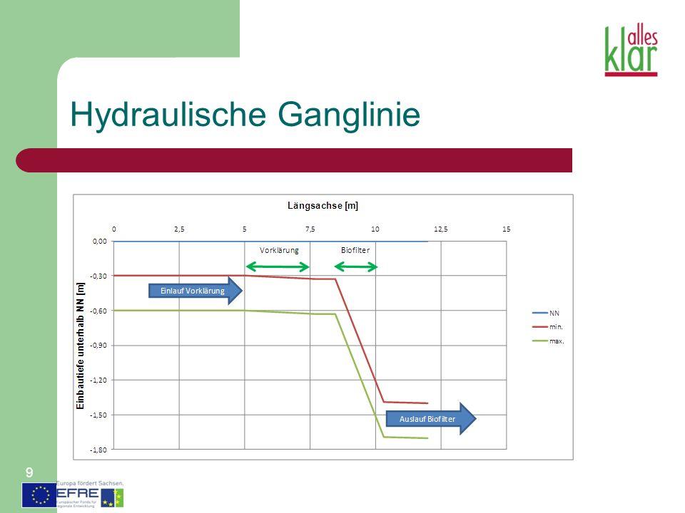 Hydraulische Ganglinie 9