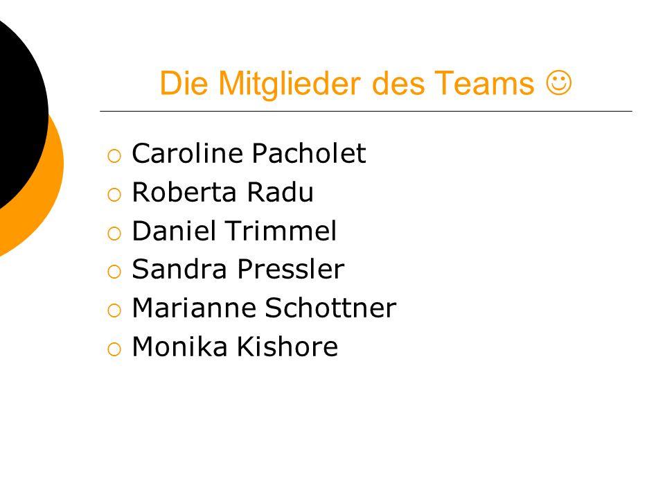 Die Mitglieder des Teams Caroline Pacholet Roberta Radu Daniel Trimmel Sandra Pressler Marianne Schottner Monika Kishore