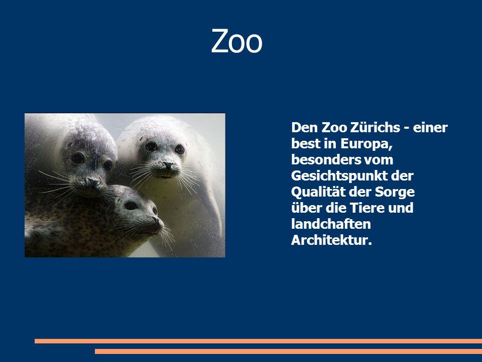 Den Zoo Zürichs - einer best in Europa, besonders vom Gesichtspunkt der Qualität der Sorge über die Tiere und landchaften Architektur. Zoo