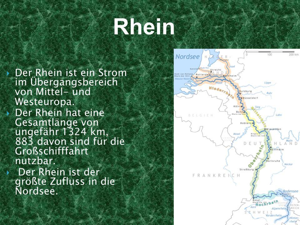 Der Rhein ist ein Strom im Übergangsbereich von Mittel- und Westeuropa. Der Rhein hat eine Gesamtlänge von ungefähr 1324 km, 883 davon sind für die Gr