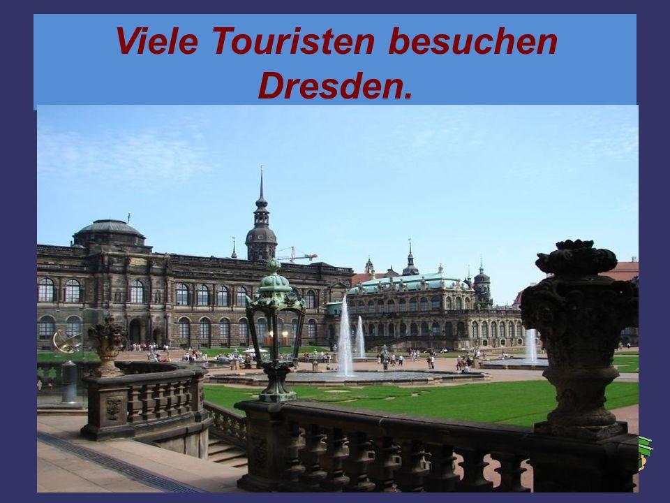 Viele Touristen besuchen Dresden.
