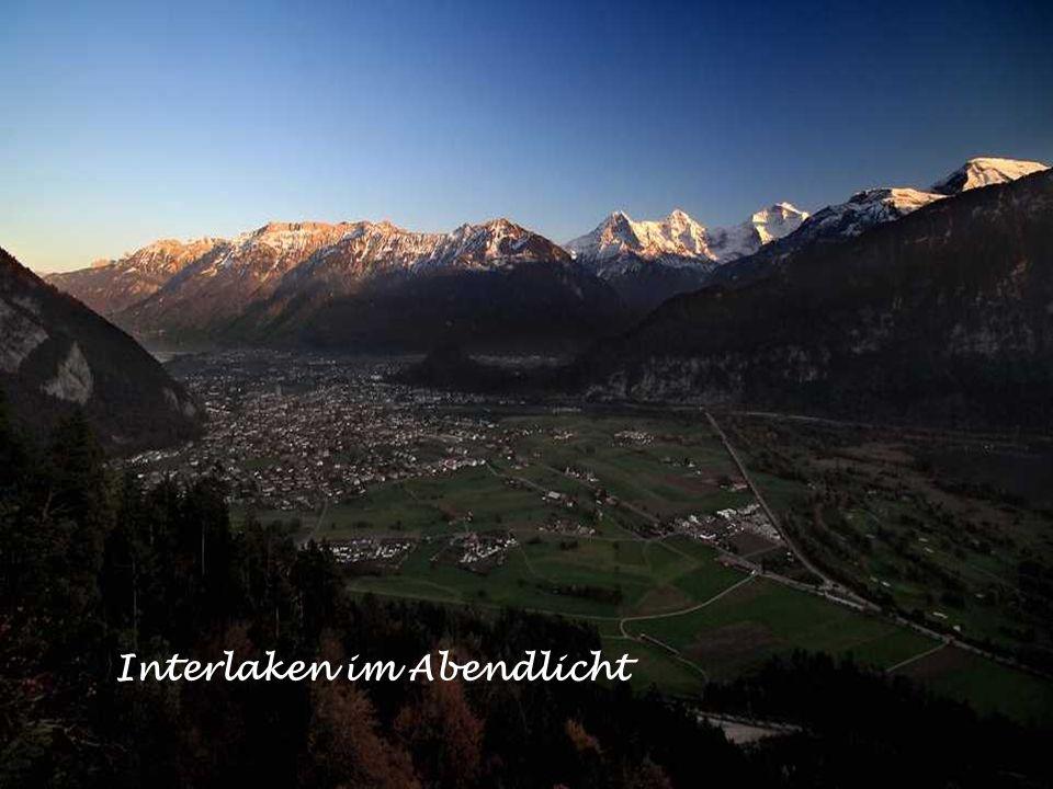 Blick von der Moosegg auf die Alpenkette