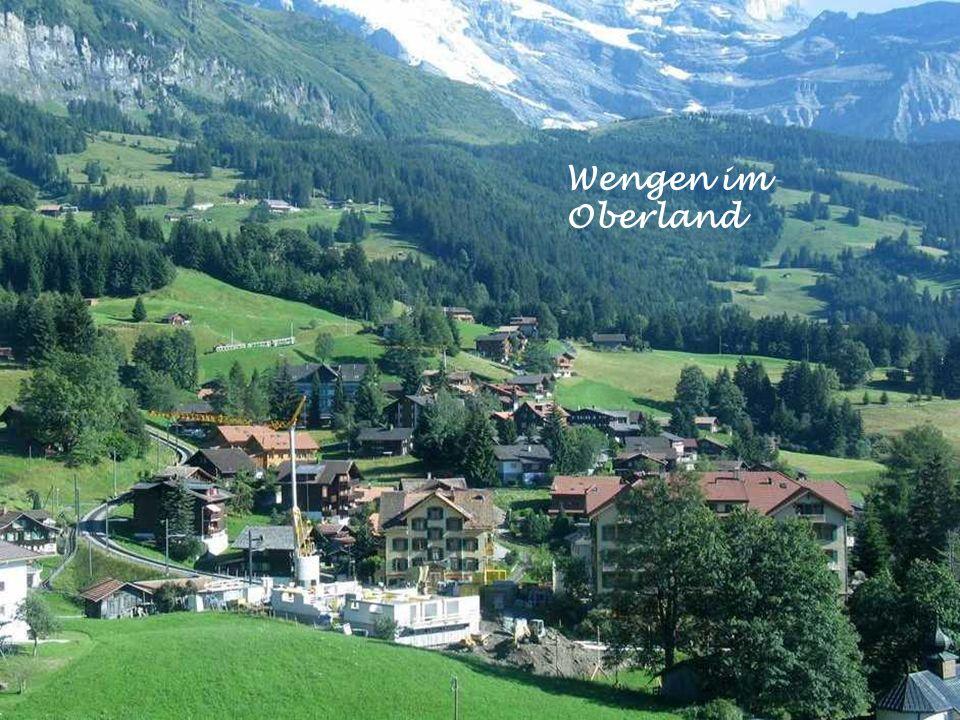 Berner Alp im Frühling
