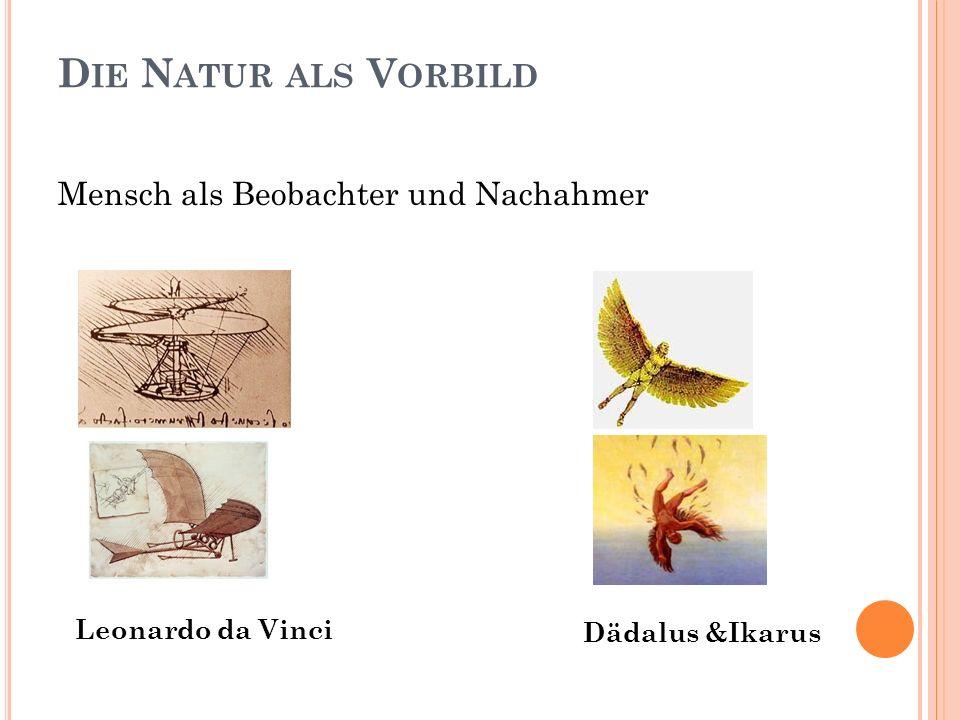 D IE N ATUR ALS V ORBILD Mensch als Beobachter und Nachahmer Leonardo da Vinci Dädalus &Ikarus