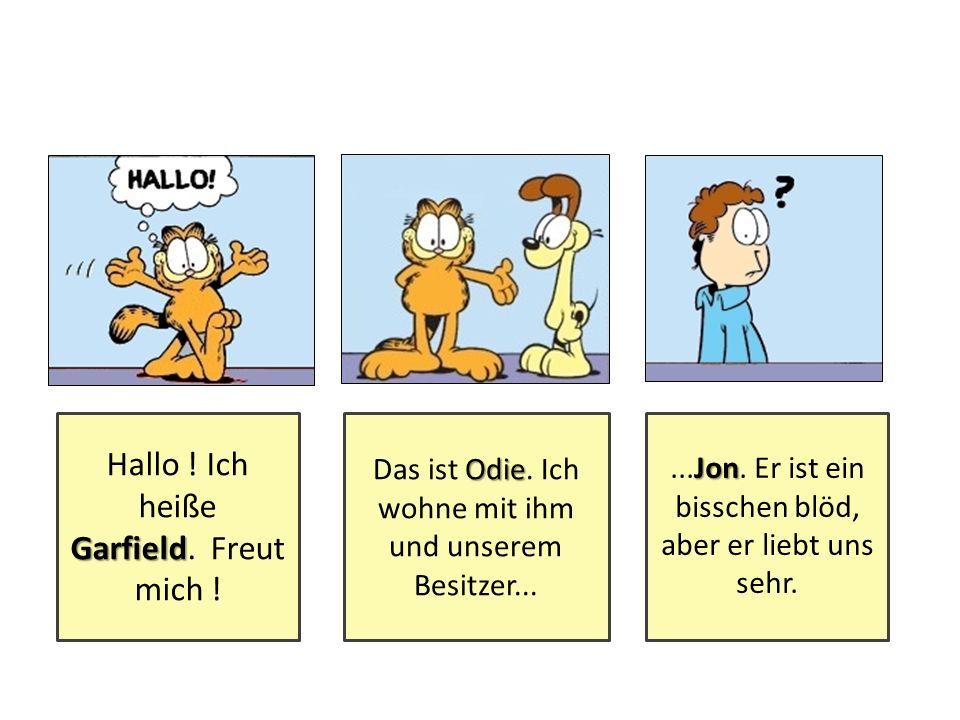 Hallo .Ich heiße Garfield Garfield. Freut mich . Odie Das ist Odie.