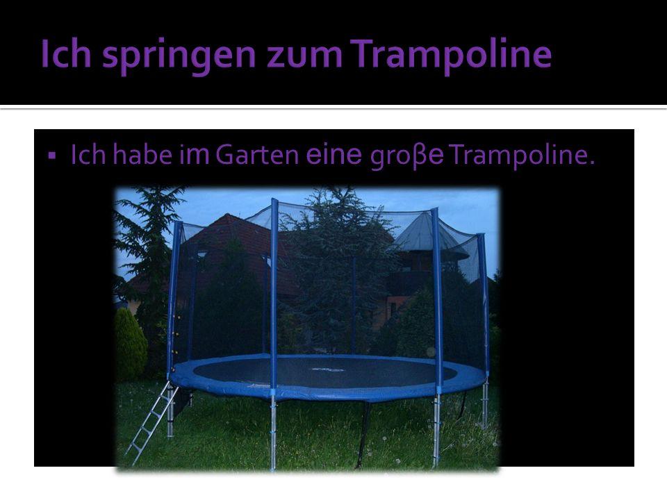 Ich habe i m Garten eine groβ e Trampoline.