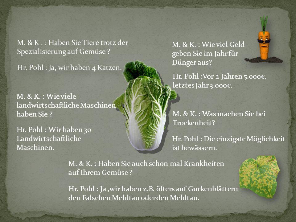 M.& K. : Woher bekommen Sie ihre Samen . Hr. Pohl : Wir bekommen unsere Samen aus.