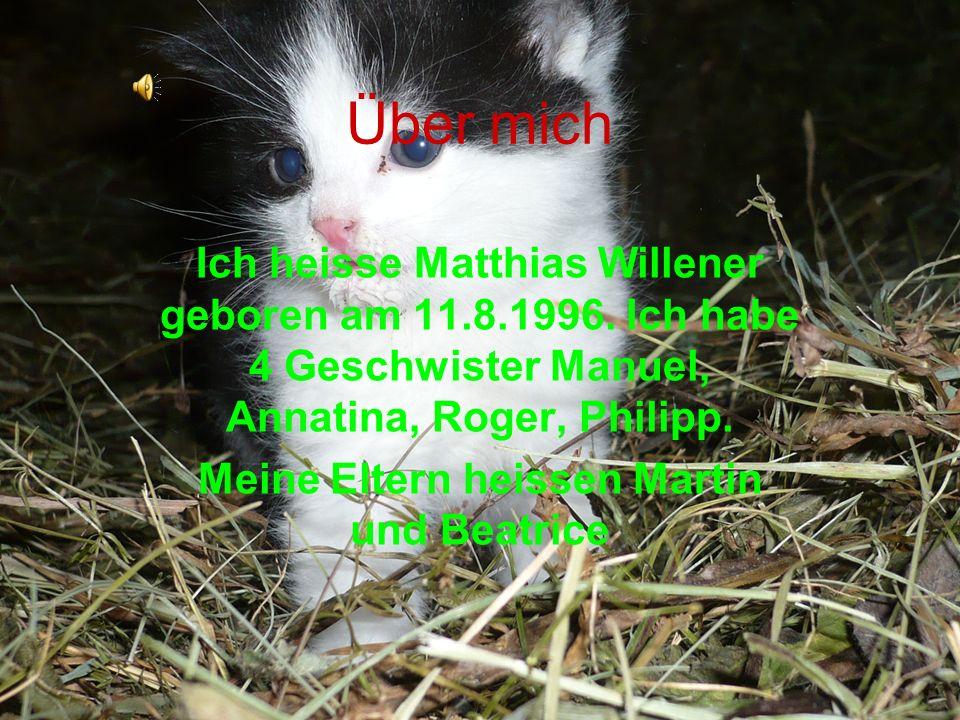 Über mich Ich heisse Matthias Willener geboren am 11.8.1996. Ich habe 4 Geschwister Manuel, Annatina, Roger, Philipp. Meine Eltern heissen Martin und