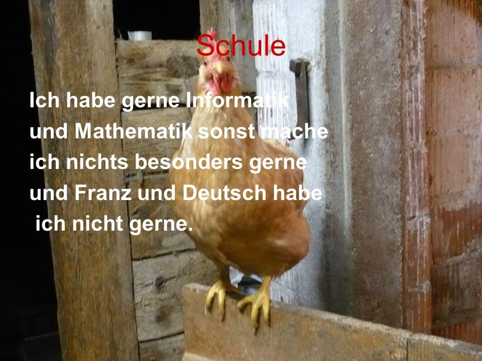 Schule Ich habe gerne Informatik und Mathematik sonst mache ich nichts besonders gerne und Franz und Deutsch habe ich nicht gerne.