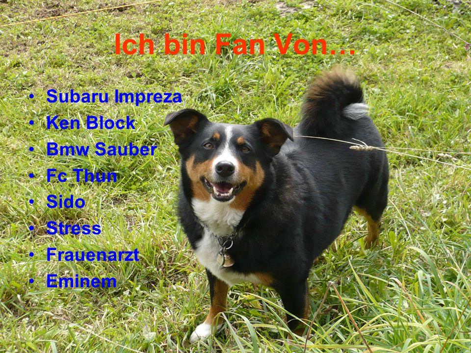 Ich bin Fan Von… Subaru Impreza Ken Block Bmw Sauber Fc Thun Sido Stress Frauenarzt Eminem