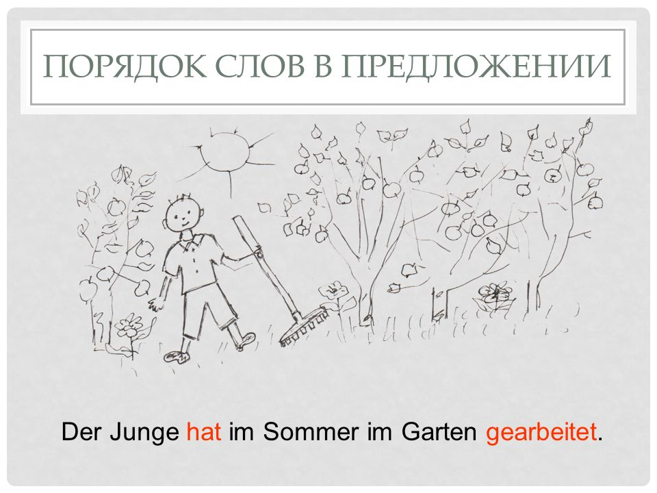 ПОРЯДОК СЛОВ В ПРЕДЛОЖЕНИИ Der Junge hat im Sommer im Garten gearbeitet.