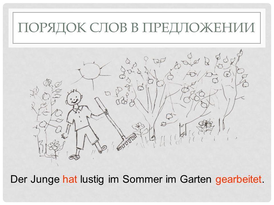 ПОРЯДОК СЛОВ В ПРЕДЛОЖЕНИИ Der Junge hat lustig im Sommer im Garten gearbeitet.