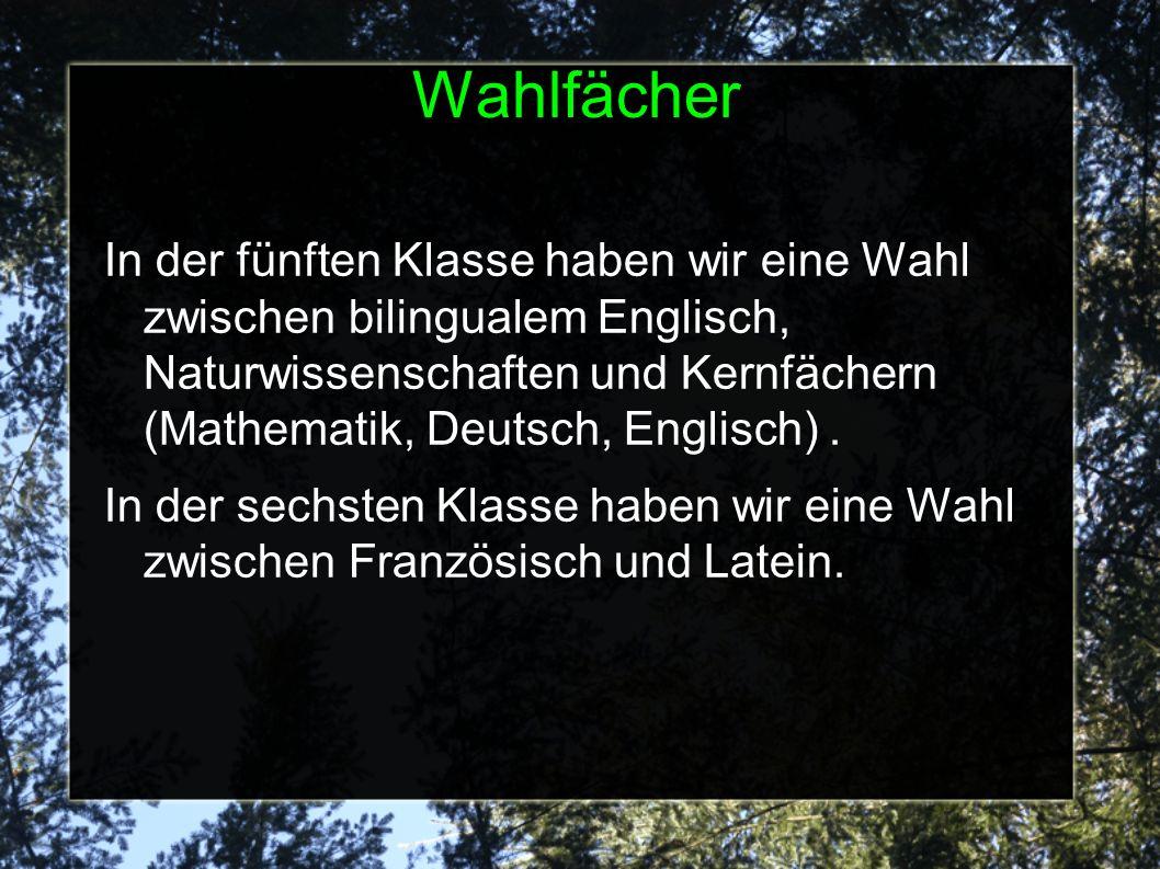 Wahlfächer In der fünften Klasse haben wir eine Wahl zwischen bilingualem Englisch, Naturwissenschaften und Kernfächern (Mathematik, Deutsch, Englisch).