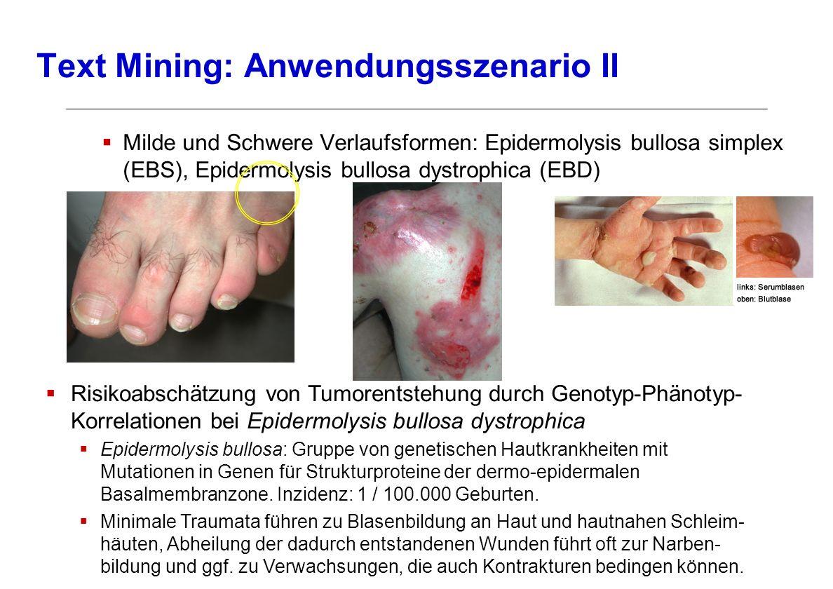 Milde und Schwere Verlaufsformen: Epidermolysis bullosa simplex (EBS), Epidermolysis bullosa dystrophica (EBD) Text Mining: Anwendungsszenario II Risi