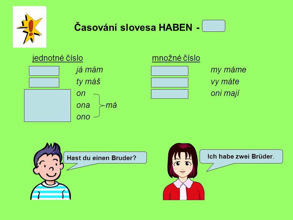 Časování slovesa HABEN - MÍT jednotné číslo ich habejá mám du hastty máš eron sie hatonamá esono množné číslo wir habenmy máme ihr habtvy máte sie habenoni mají Hast du einen Bruder.