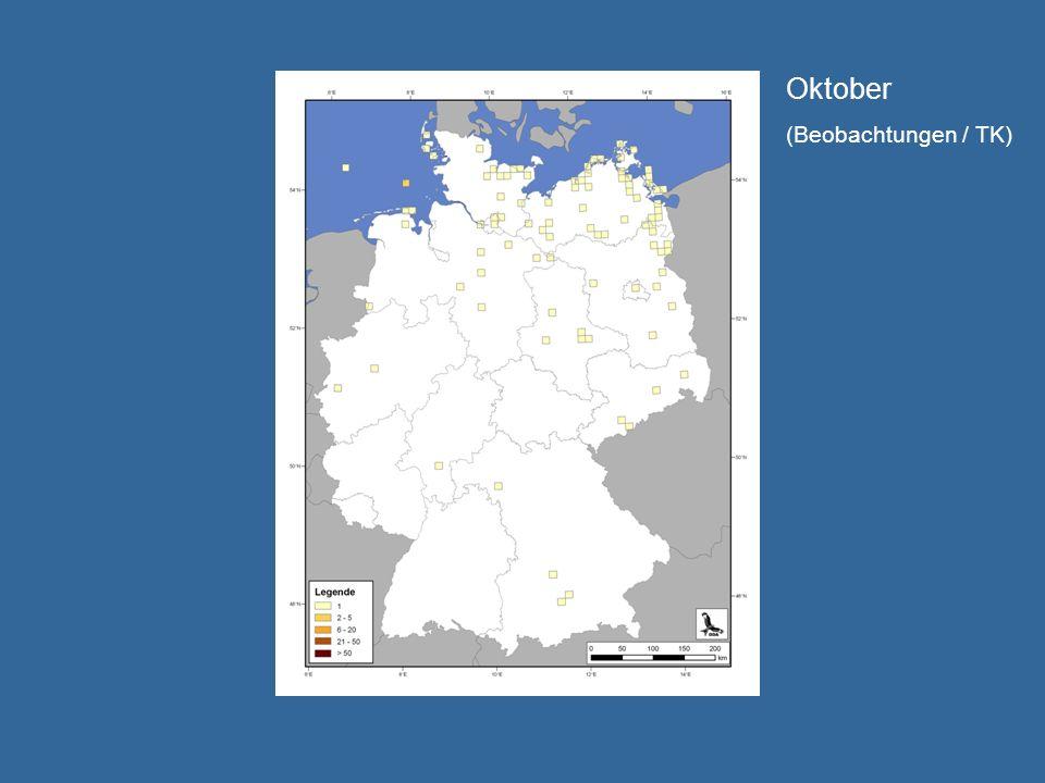 Oktober (Beobachtungen / TK)