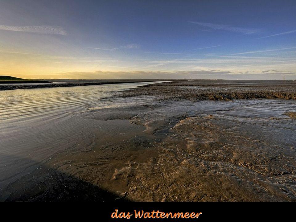 das Wattenmeer das Wattenmeer
