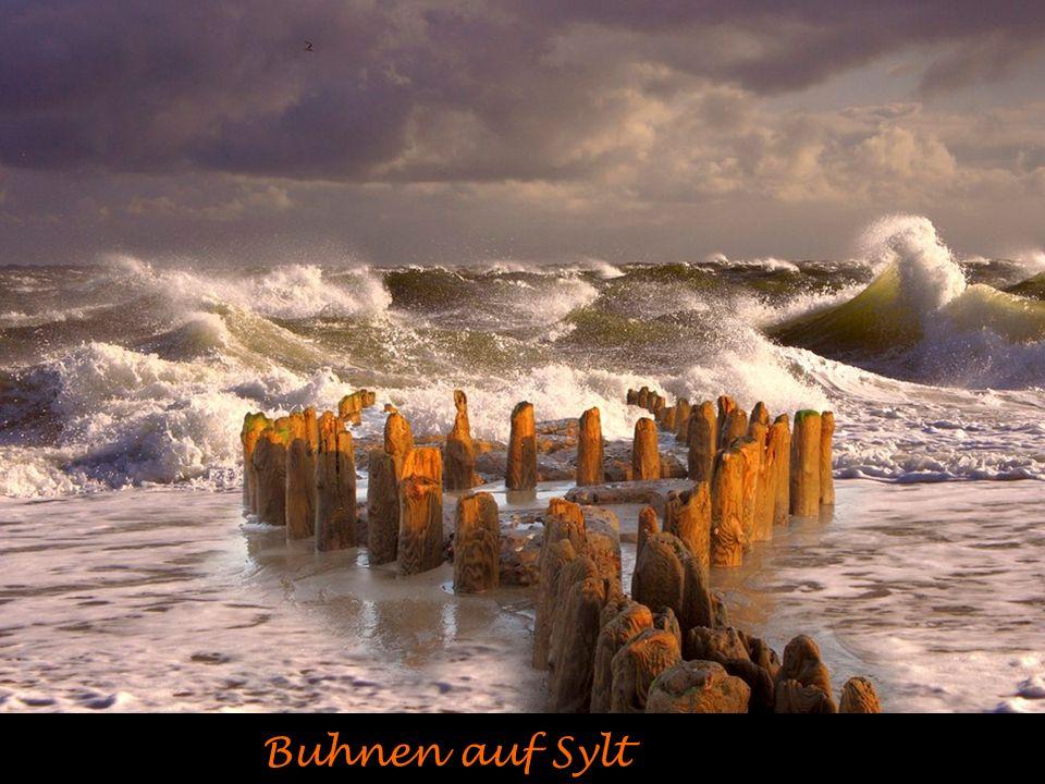 Herbstliche Ostsee