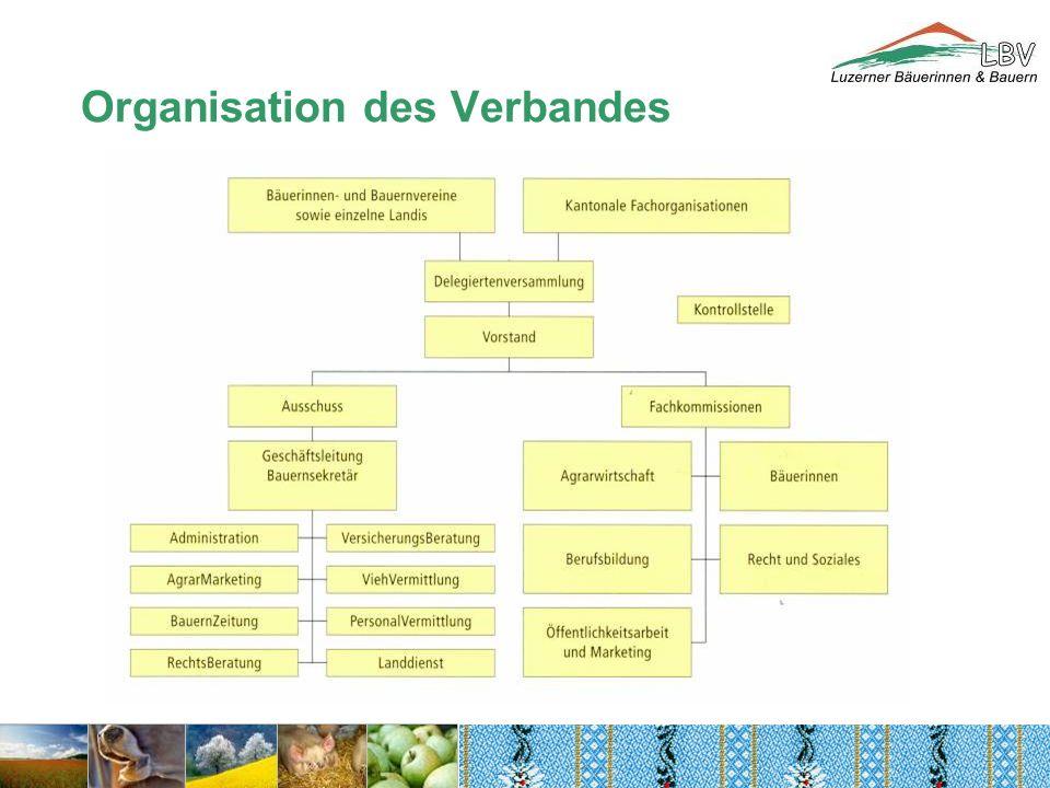 Organisation des Verbandes