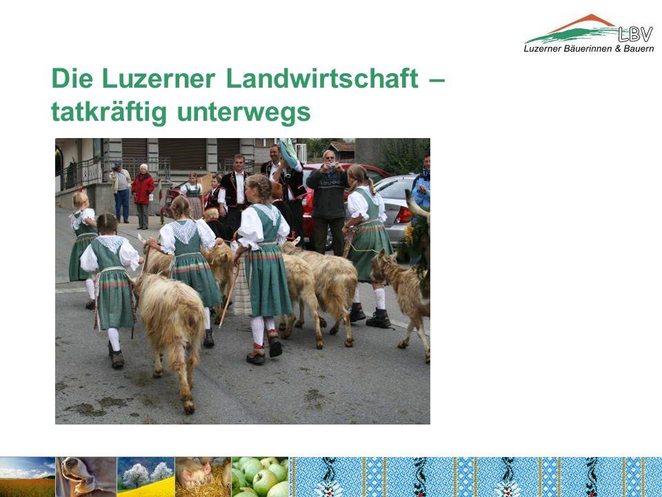 Die Luzerner Landwirtschaft – tatkräftig unterwegs