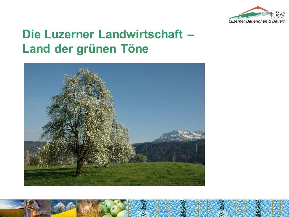 Die Luzerner Landwirtschaft – Land der grünen Töne