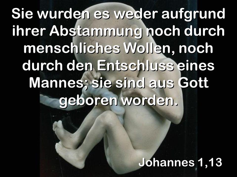 Johannes 1,13 Sie wurden es weder aufgrund ihrer Abstammung noch durch menschliches Wollen, noch durch den Entschluss eines Mannes; sie sind aus Gott