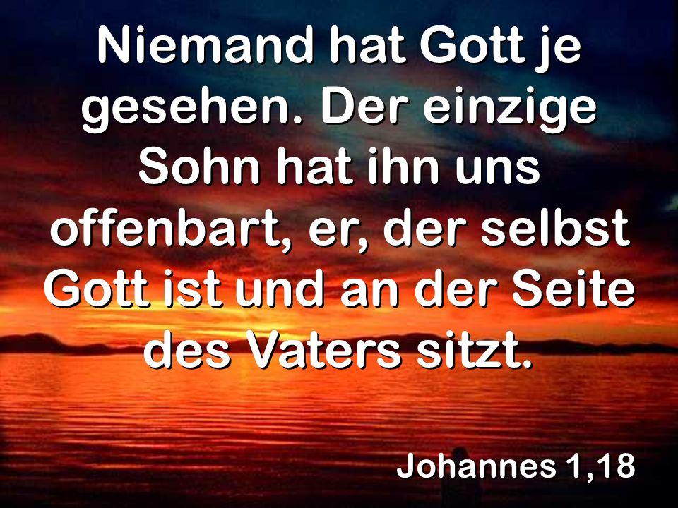 Johannes 1,18 Niemand hat Gott je gesehen. Der einzige Sohn hat ihn uns offenbart, er, der selbst Gott ist und an der Seite des Vaters sitzt.
