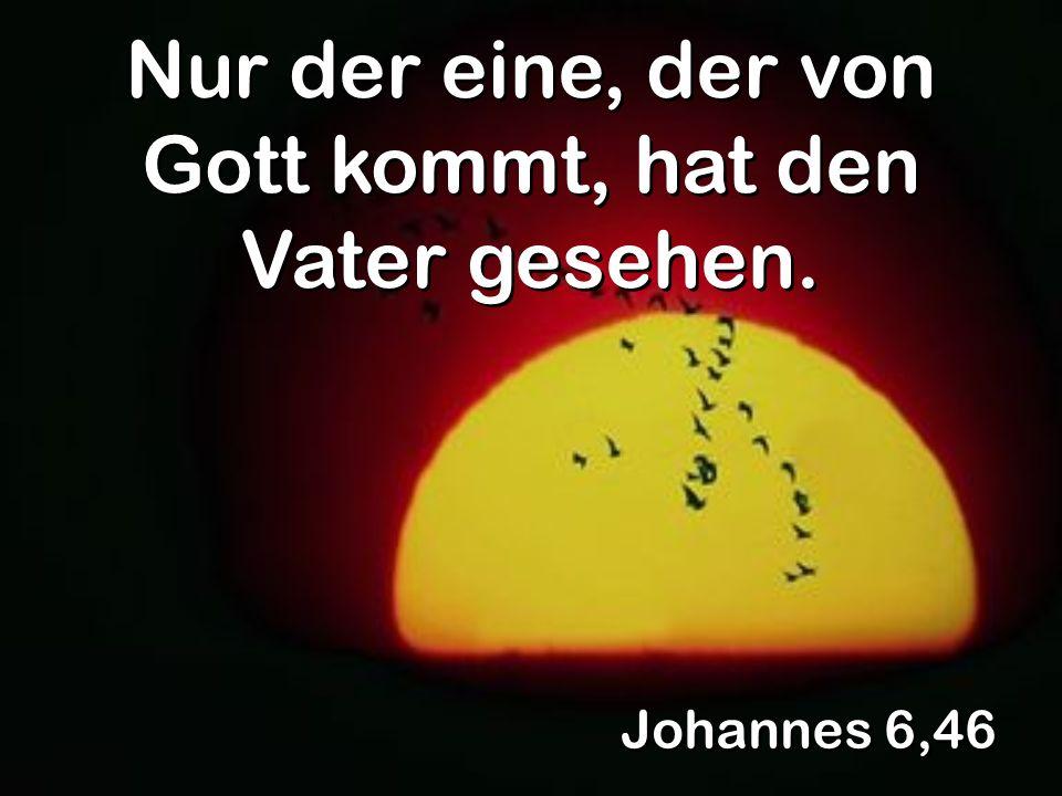Johannes 6,46 Nur der eine, der von Gott kommt, hat den Vater gesehen.