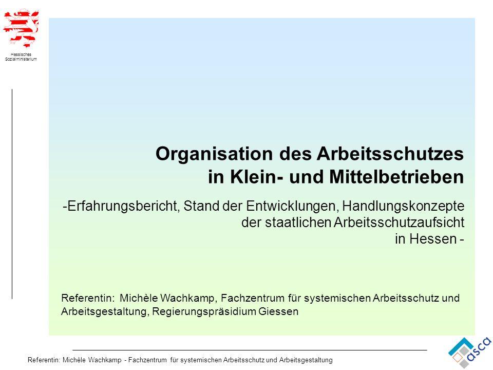 Hessisches Sozialministerium Referentin: Michèle Wachkamp - Fachzentrum für systemischen Arbeitsschutz und Arbeitsgestaltung Organisation des Arbeitss
