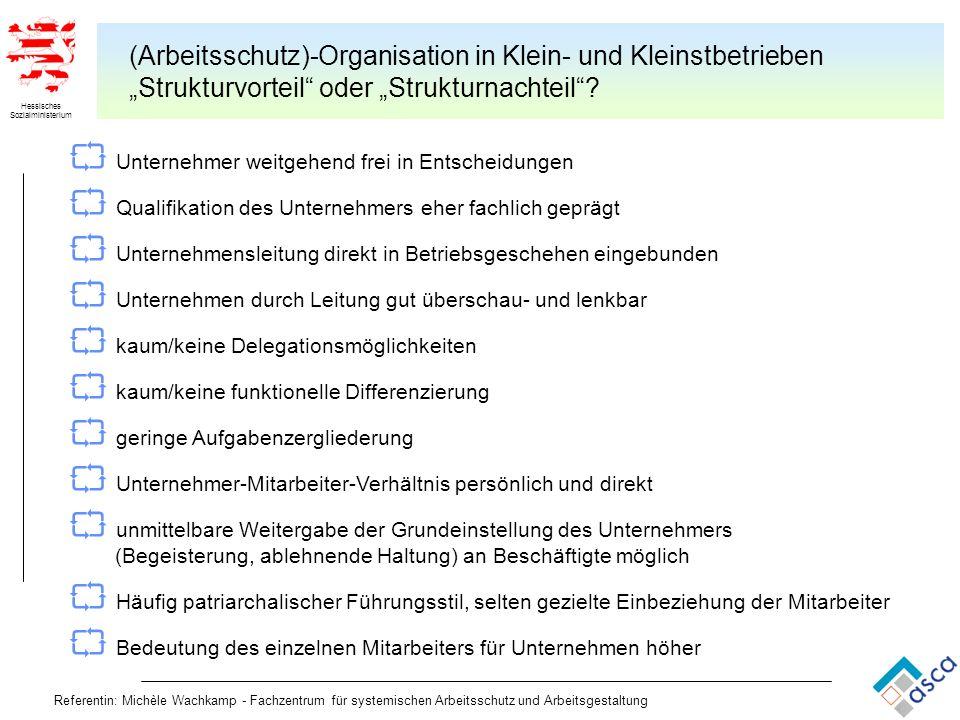 Hessisches Sozialministerium Referentin: Michèle Wachkamp - Fachzentrum für systemischen Arbeitsschutz und Arbeitsgestaltung (Arbeitsschutz)-Organisat