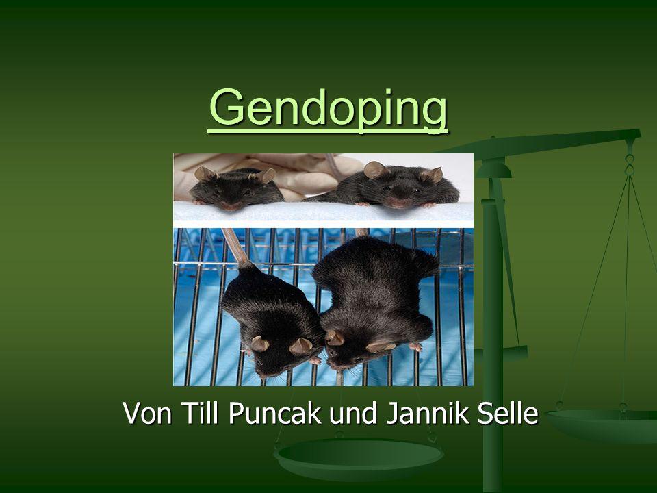 Gendoping Von Till Puncak und Jannik Selle