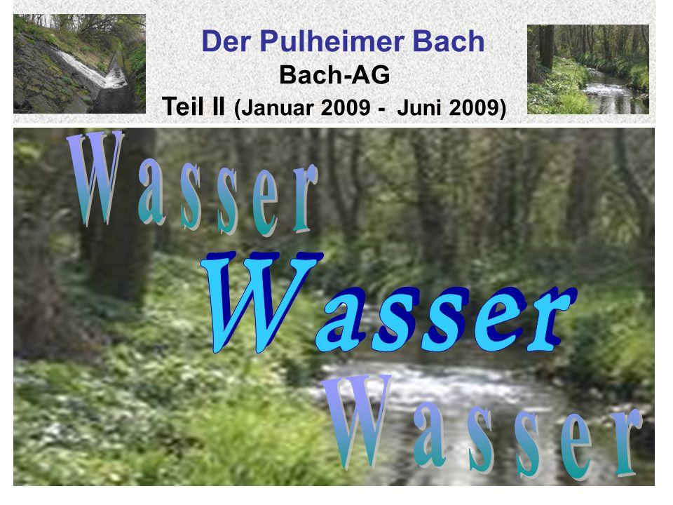 Der Pulheimer Bach Bach-AG Teil II (Januar 2009 - Juni 2009)