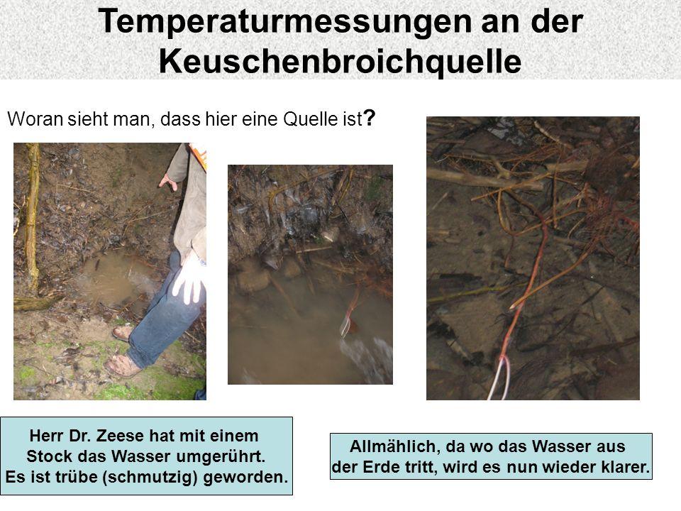 An der Keuschenbroichquelle Woran sieht man, dass hier eine Quelle ist ? Herr Dr. Zeese hat mit einem Stock das Wasser umgerührt. Es ist trübe (schmut