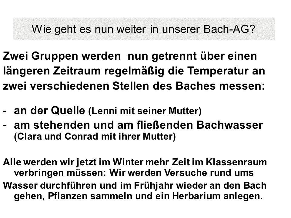 Wie geht es nun weiter in unserer Bach-AG? Zwei Gruppen werden nun getrennt über einen längeren Zeitraum regelmäßig die Temperatur an zwei verschieden