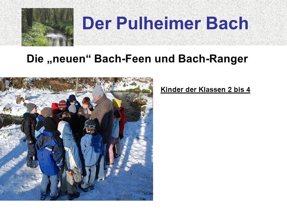 Der Pulheimer Bach Die neuen Bach-Feen und Bach-Ranger Kinder der Klassen 2 bis 4