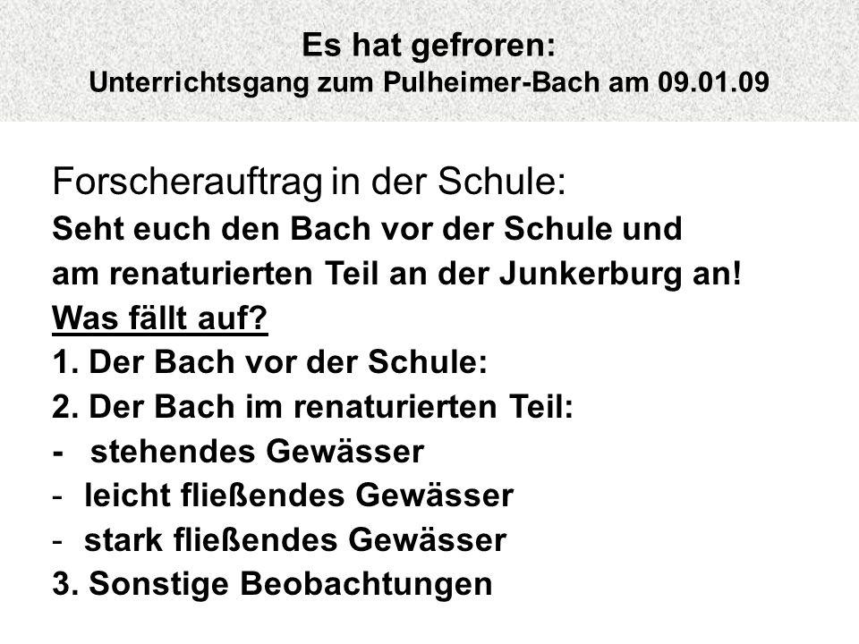 Es hat gefroren: Unterrichtsgang zum Pulheimer-Bach am 09.01.09 Forscherauftrag in der Schule: Seht euch den Bach vor der Schule und am renaturierten