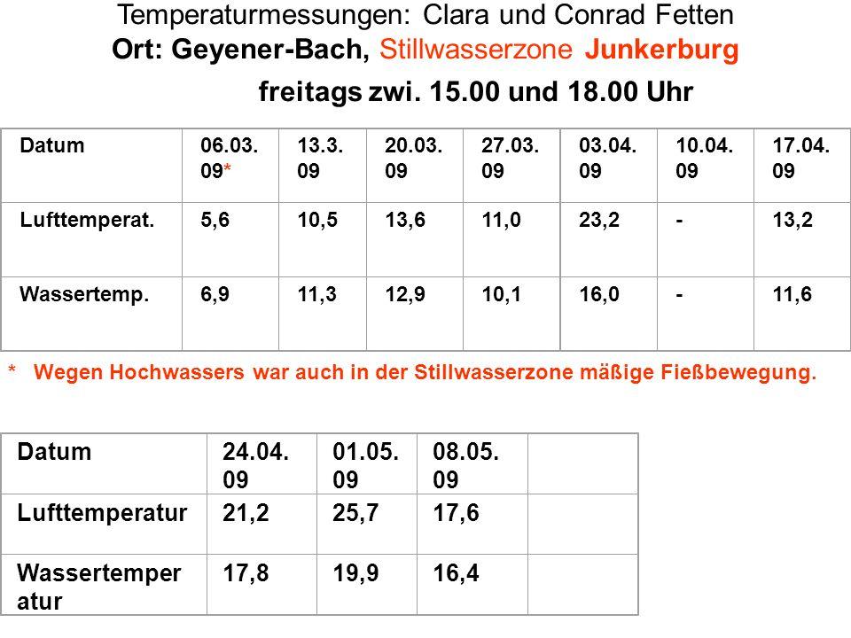 Temperaturmessungen: Clara und Conrad Fetten Ort: Geyener-Bach, Stillwasserzone Junkerburg freitags zwi. 15.00 und 18.00 Uhr Datum06.03. 09* 13.3. 09